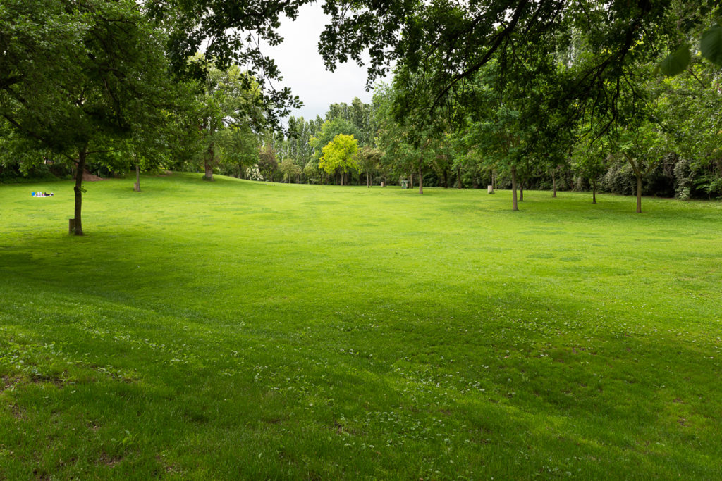 The lawn at the Abbadia di Fiastra, Italy. Things to do in Le Marche in Spring